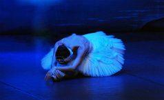 EL LAGO DE LOS CISNES – Ballet de San Petersburgo en el Teatro EDP Gran Vía