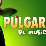 PULGARCITO El Musical en el Teatro Rialto