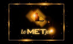 MET-JOR Director 2017
