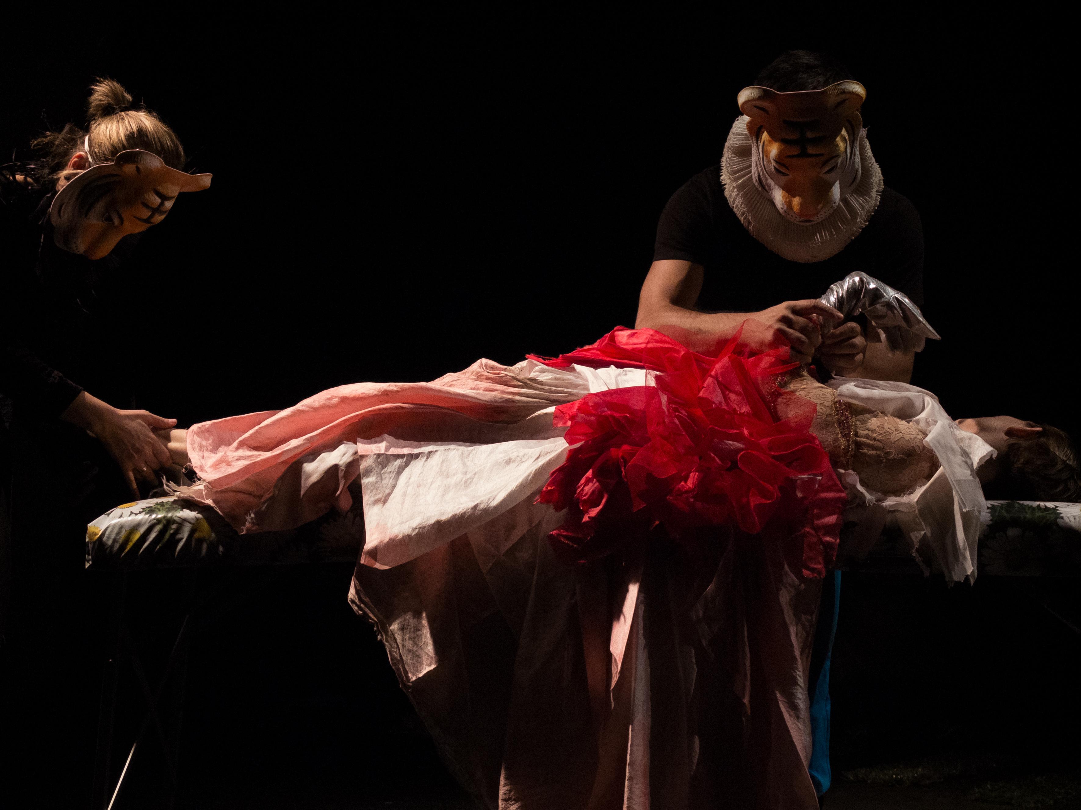 LA DONA INMOBILE en el Teatro del Barrio