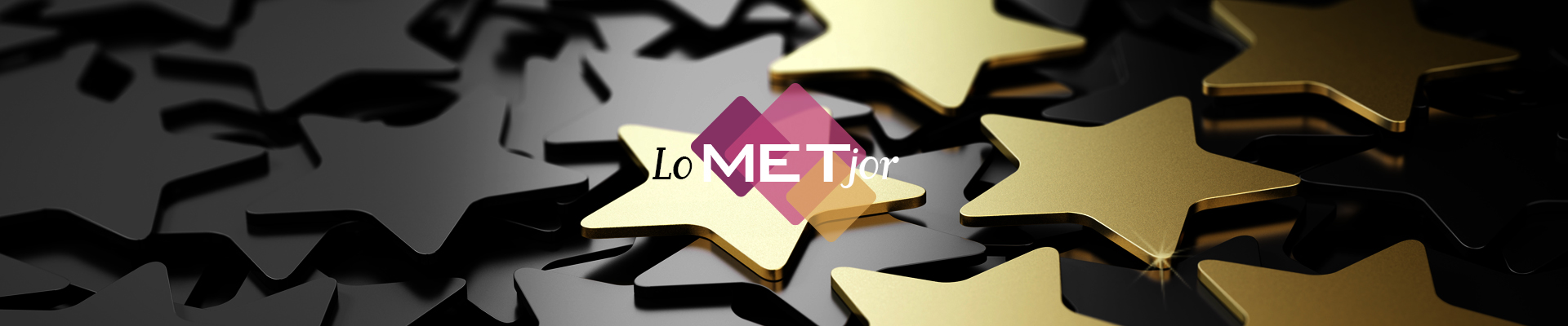 Header_METjor