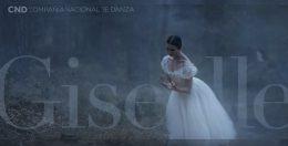 """La COMPAÑÍA NACIONAL DE DANZA presenta """"GISELLE"""", en el Teatro de la Zarzuela"""